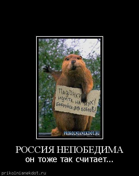 Фото россыпи жемчуга днём, неделя